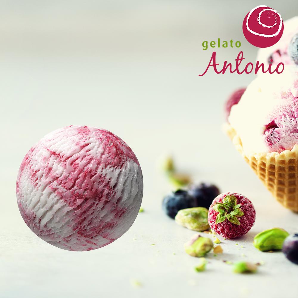 Yoghurt Bosvruchtensaus Gelato Antonio